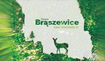 Gmina Brąszewice